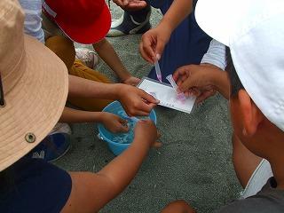 簡易水質検査体験